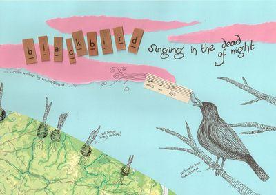 Dwzi blackbird