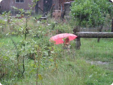 En_het_regende_en_regende_en_regend