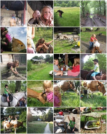 Het_betere_boeren_leven
