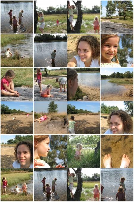 Mozaik_van_een_mooie_heidemiddag